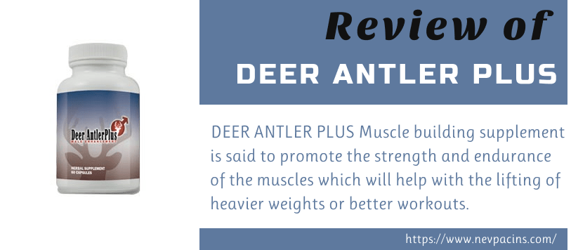 Deer Antler Plus